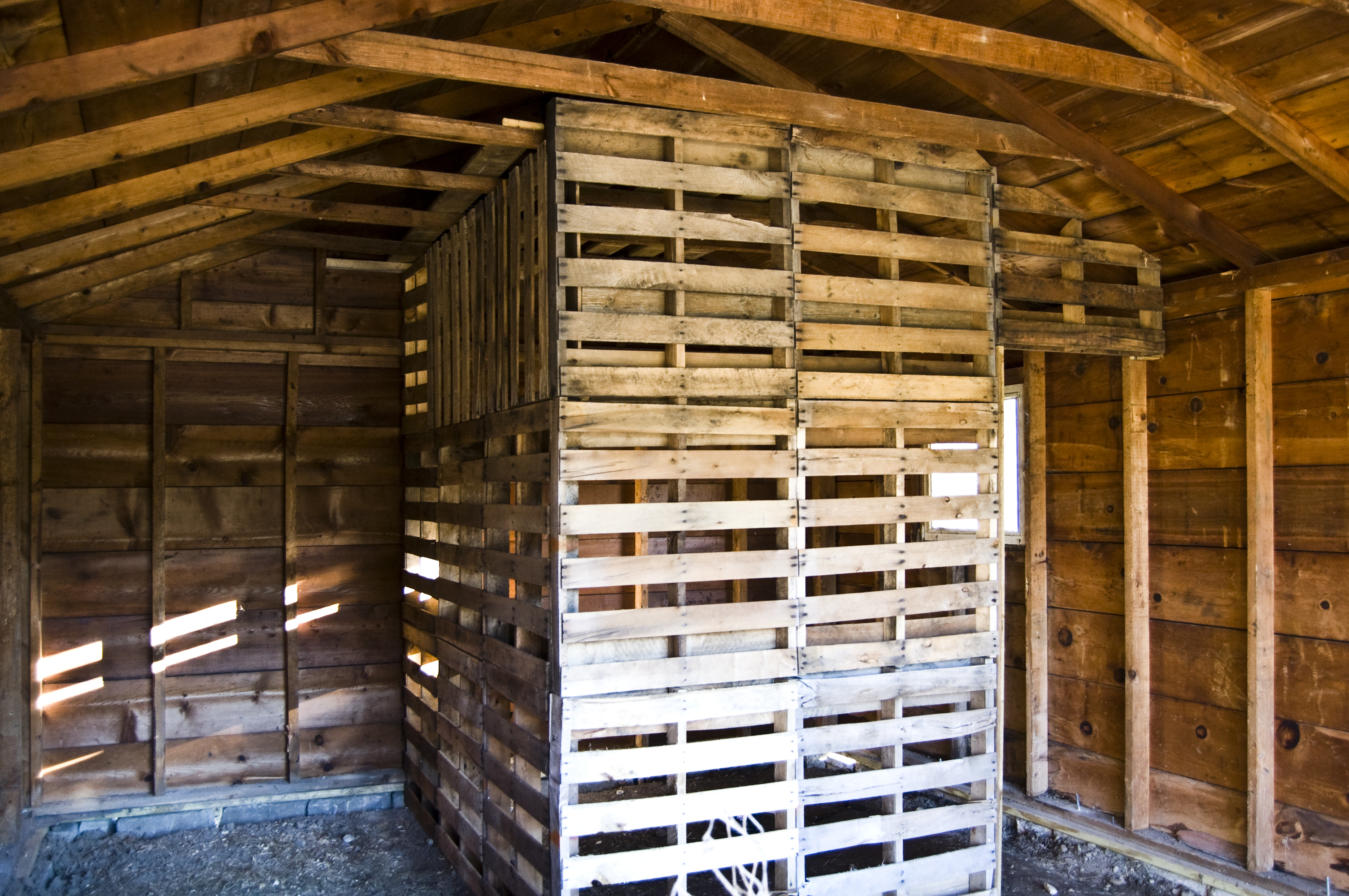 Build A Turkey Coop From Pallets Material Handling